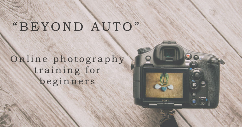 online photography courses for beginners