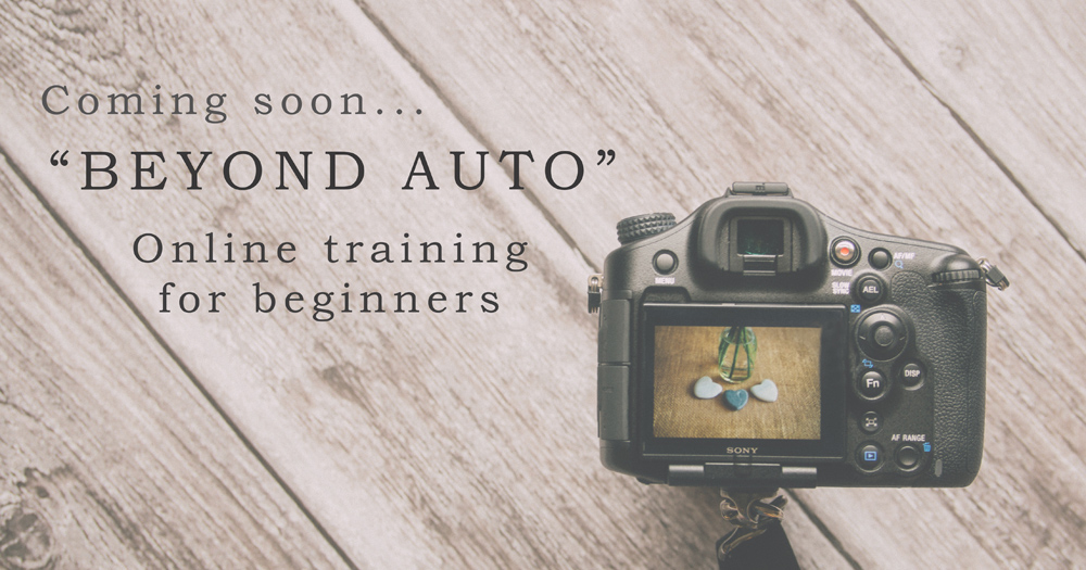 Photography courses for beginners