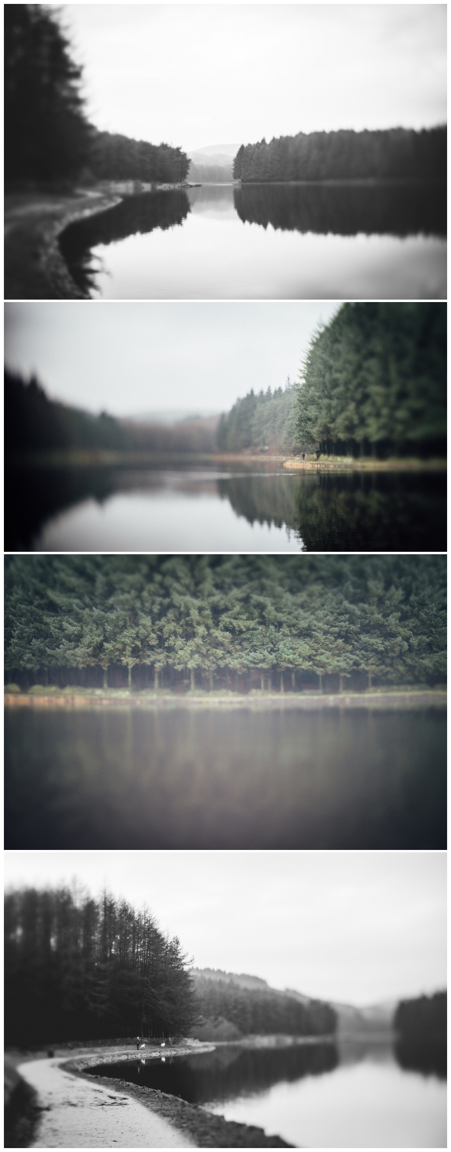 dreary winter landscapes with Lensbaby edge 50