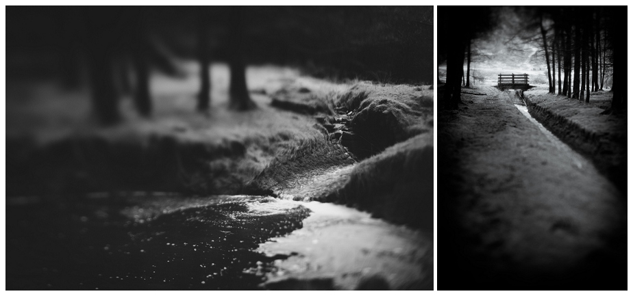 Lensnbaby Edge 50, black & white winter landscapes