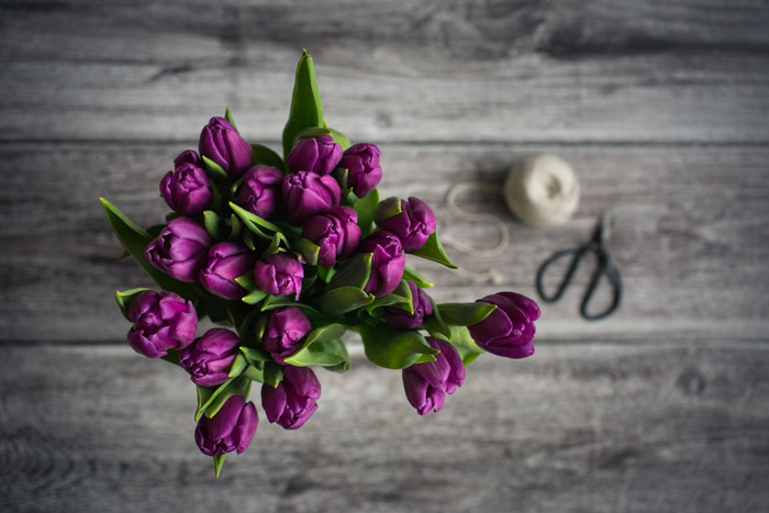 Online photography courses, flowers and still life