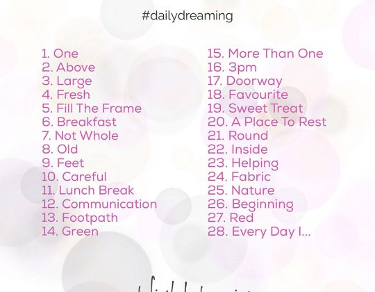 photo a day challenge 2017