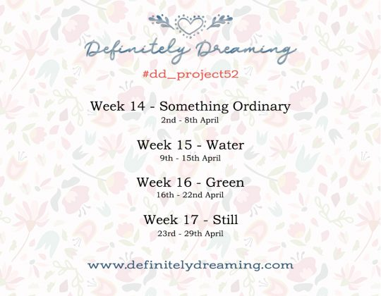 Weekly photo prompts