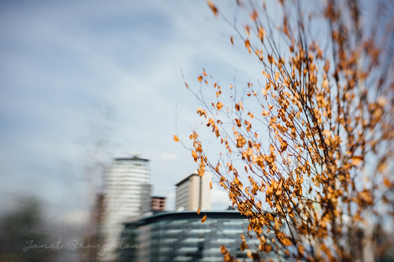 Lensbaby Sol 45 review