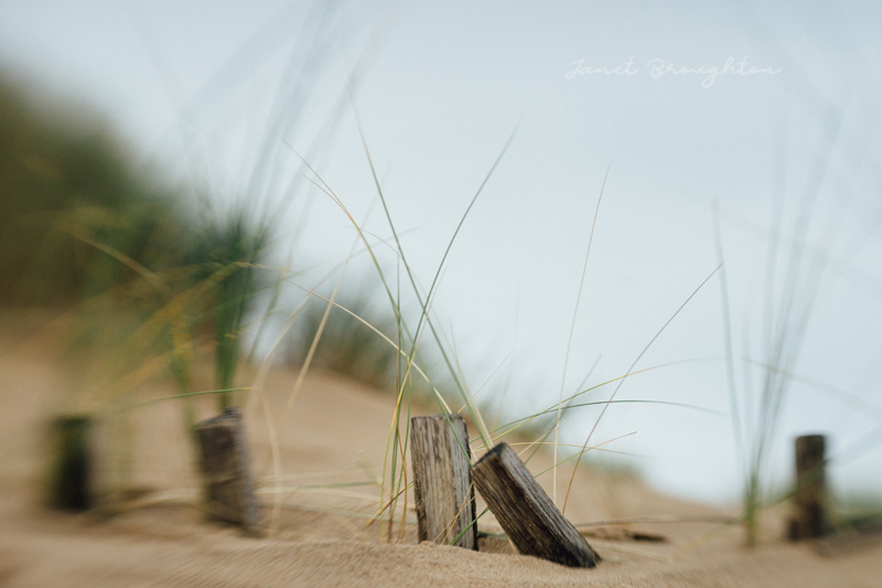 Lensbaby Edge 50, Sweet 80 landscapes