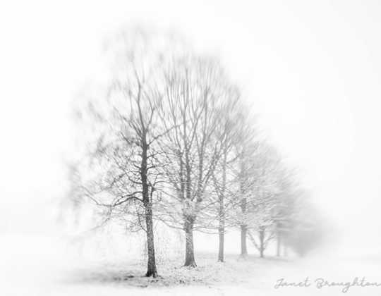 Lensbaby b&W landcsapes by Janet Broughton
